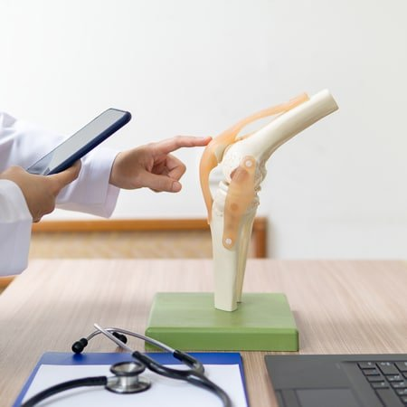 a doctor is examining a 'knee model' for Orthopedic Treatment